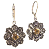 Co-Exist- Earrings w/ Golden Citrine - 4284