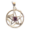Pentacle Serpent - Amethyst .925 - 4288