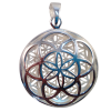 5246 - Pendant - Seed/Flower of Life .925
